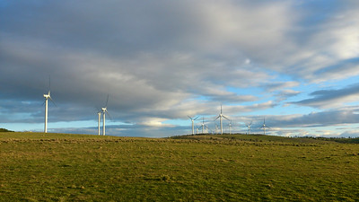 Truffles and Windfarms