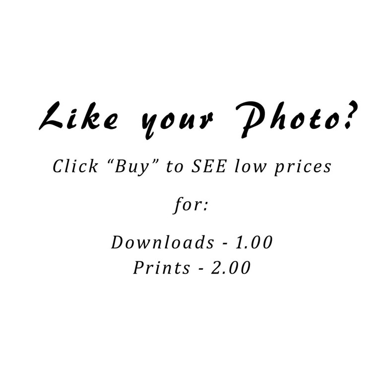 Like your photo-1