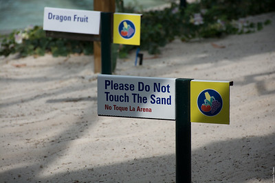 Please Do Not Touch The Sand