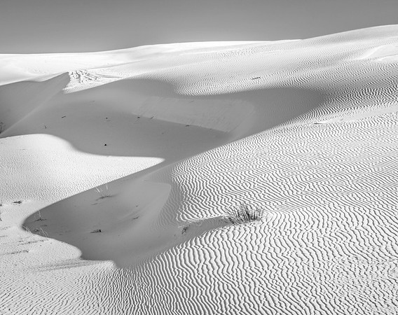 Sand Dunes and Shadows, White Sands