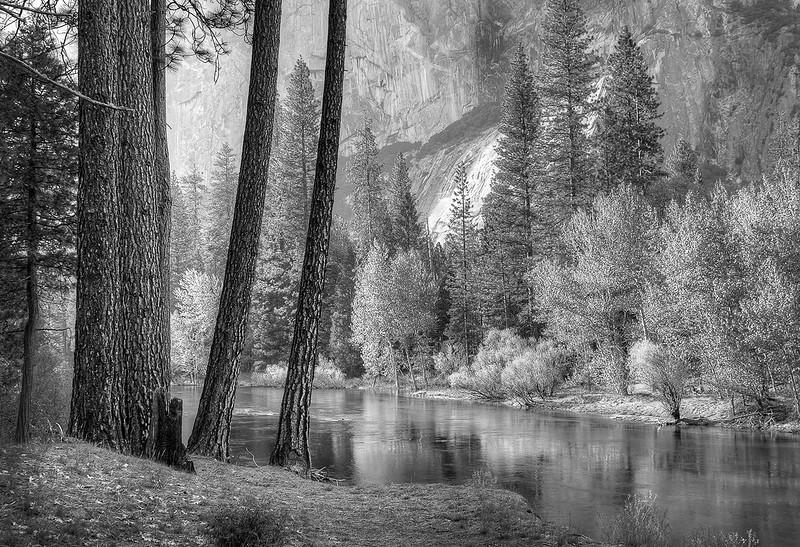 The Base of El Capitain, Yosemite