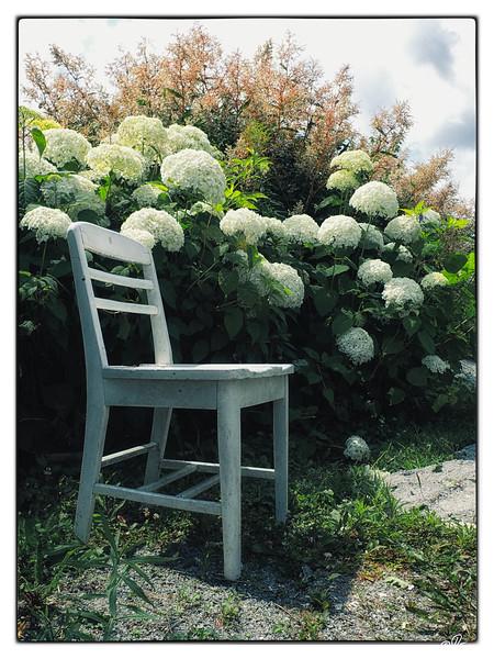 jardins-avec-danielle-et-franois-22_14598893498_o