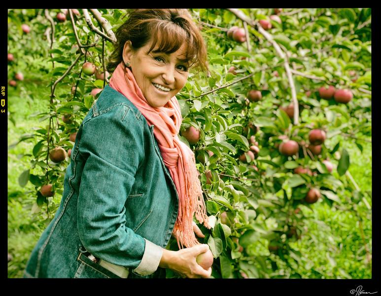 Aux pommes à Oka-24