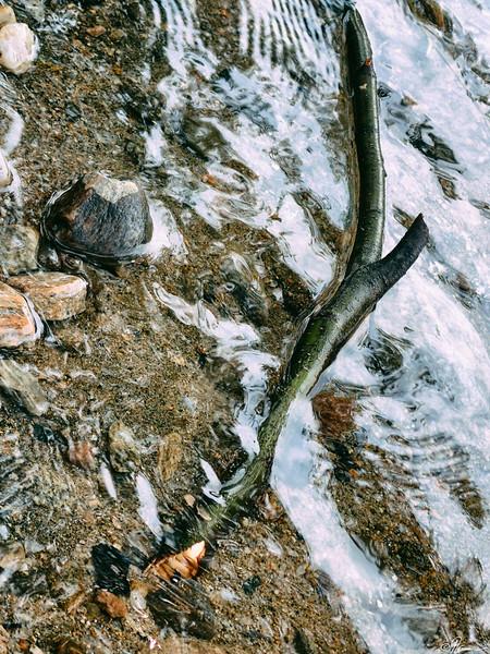 duhamel-lac-simon-avec-les-kahn-10_14723290661_o