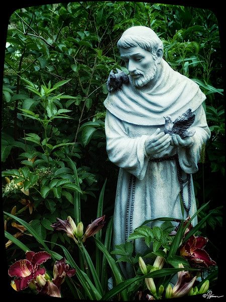 jardins-avec-danielle-et-franois-14_14598881198_o