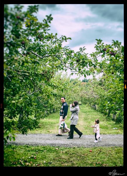 Aux pommes à Oka-21