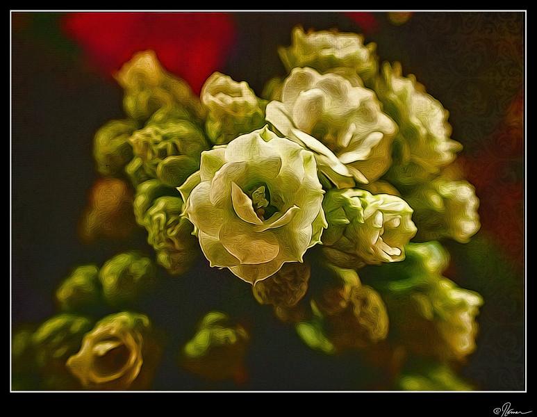Bouquet de Noël-2