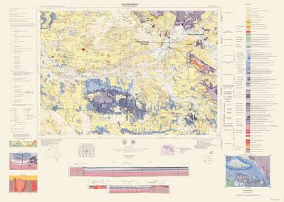 Fitzroy geol map