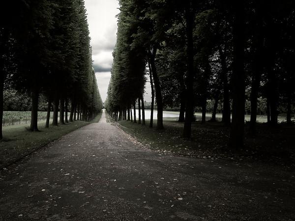 Tree-way