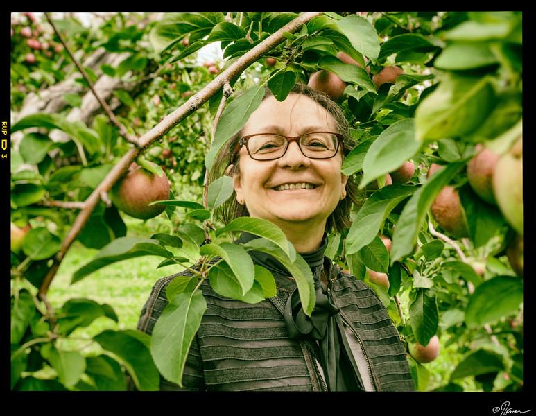 Aux pommes à Oka-25