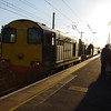 20302 + 20305 stand at Ely working Pathfinder Railtours The Deviator 14:05 Ely Papworth Sidings - Crewe 11/01/14.