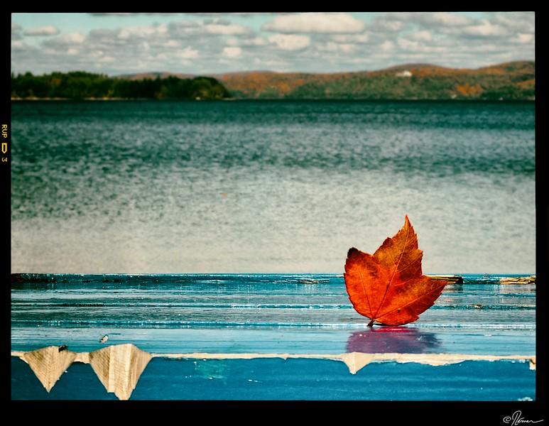 promenade-lac-simon-3_15275105199_o