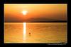 DSC_9043-12x18-05_2014-W