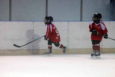 2006 Lakeland Minions