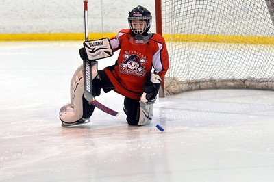 Sylvania Maple Leafs
