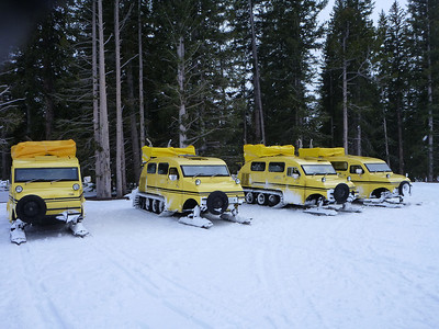 A fleet of Bombardier Snowbus/Snowcoaches in Yellowstone National Park.