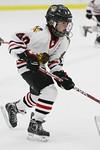 ASAP10240_Game 1 - Michigan Ice Hawks Vs Suburban