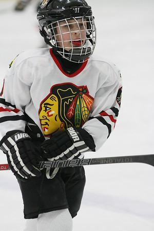 Michigan Ice Hawks