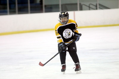Livonia Bruins SQUIRT