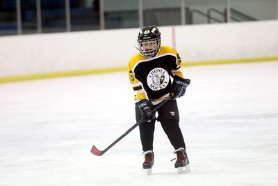 Livonia Bruins SQUIRT