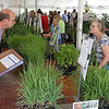 John Patsch - For Shaw Media<br /> Hundreds attended The Will County Distict of Will County's native plant sale to add to their gardens and get tip from gardening experts.