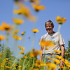 Rob Winner – rwinner@shawmedia.com<br /> <br /> Dr. Sheldon S. Nicol is seen among Coreopsis flowers planted in front of his Shorewood home Friday, June 6, 2014. For the past eight years Nicol has planted native plants around his property.