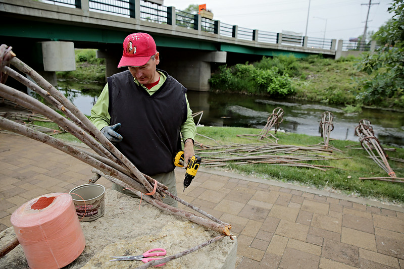 Rob Winner – rwinner@shawmedia.com<br /> <br /> Local artist John Siblik constructs one of his arches made from tree branches that will be placed into the I&M Canal near Ninth Street in Lockport Tuesday, June 10, 2014.