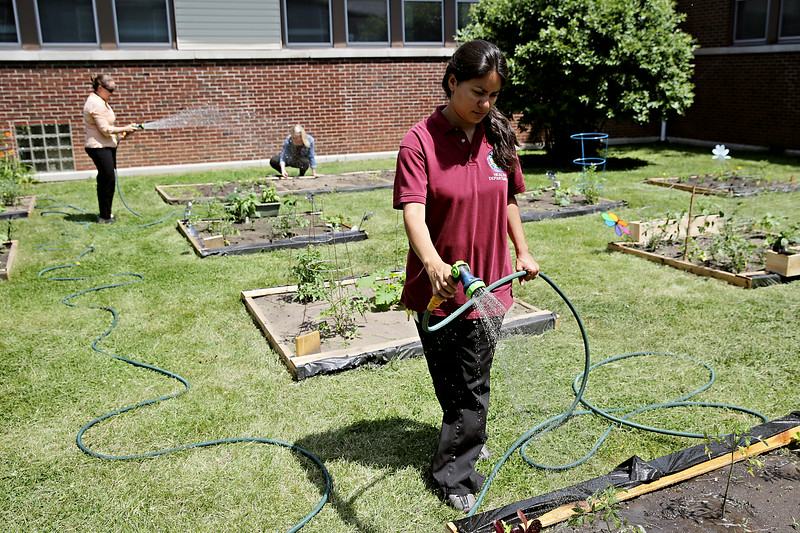 Rob Winner – rwinner@shawmedia.com<br /> <br /> Lizeth Kalec (front), Kelly McCormack and Ellen Kowalewski tend to their garden beds at the Will County Health Department in Joliet Tuesday, June 17, 2014. The wellness committee at the health department came up with the idea as a way to promote healthy habits among its employees and the community.
