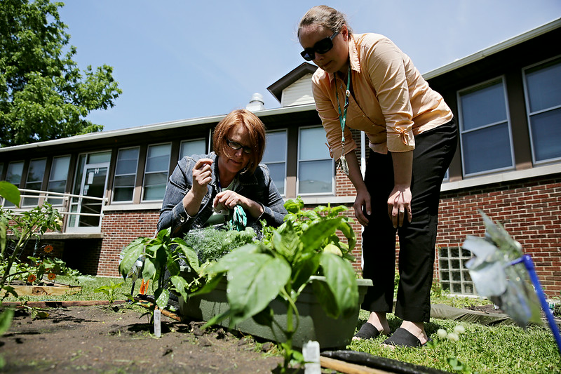 Rob Winner – rwinner@shawmedia.com<br /> <br /> Hope Cathelyn (left) and Kelly McCormack try to identify a herb growing in one of the garden beds at the Will County Health Department in Joliet Tuesday, June 17, 2014. The wellness committee at the health department came up with the idea as a way to promote healthy habits among its employees and the community.