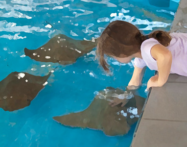 2014-06-29 - Touching Sea Creatures
