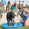 John Patsch-For Shaw Media<br /> Lauren Sweet cools of Finn in a pool provided by the Forrest Preserve District of Will County for dogs to drink and cool off in at the opening of the dog park at the Rock Run Access on McClintock Road.