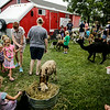 jnews_0818_farm_and_barn_03.JPG