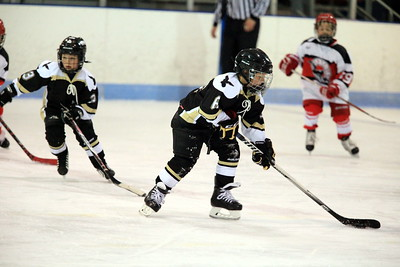 Junior Ice Hawks