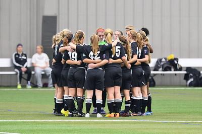 Girls U18 Michigan Hawks