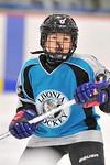 ASAP5603_Game 1 - Livonia Sharks Vs Allen Park Huskies-DISC_Johnson