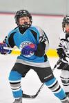 ASAP5687_Game 1 - Livonia Sharks Vs Allen Park Huskies-DISC_Johnson