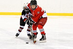 ASAP21108_Game 3 - Jackson Vs Monroe Ice Hawks-EE