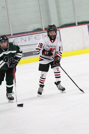 ASAP11940_Game 3 -Trenton Flyers Vs Allen Park #1-DISC