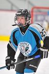 ASAP5592_Game 1 - Livonia Sharks Vs Allen Park Huskies-DISC