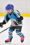 ASAP5753_Game 1 - Livonia Sharks Vs Allen Park Huskies-DISC