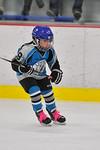 ASAP8102_Game 2 - Livonia Sharks Vs Monroe Ice Hawks-DISC