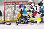 ASAP5622_Game 1 - Livonia Sharks Vs Allen Park Huskies-DISC