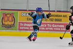 ASAP8111_Game 2 - Livonia Sharks Vs Monroe Ice Hawks-DISC