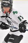 ASAP5630_Game 1 - Allen Park Huskies Vs Livonia Sharks-DISC