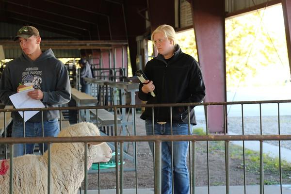 10/15 FFA District Livestock Judging