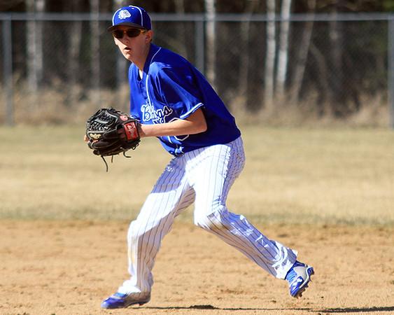 2015 Barnum Baseball