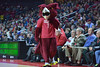 PHILADELPHIA - JANUARY 14:  Hooter the Owls, the Temple mascot, shown during the AAC conference college basketball game January 14, 2015 in Philadelphia.