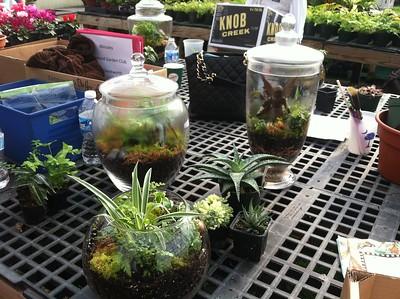 Dogwood Garden Club/Terrarium Workshop