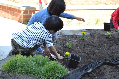 LS Gardening 2015