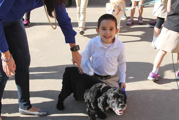 First Grade Pet Show